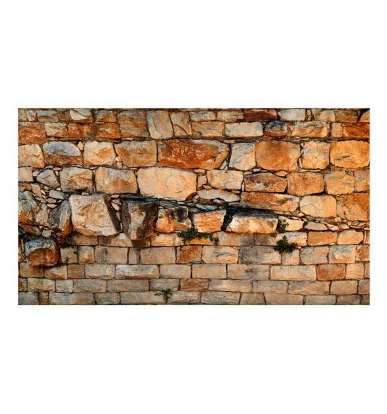 500x280 cm. ancient wall