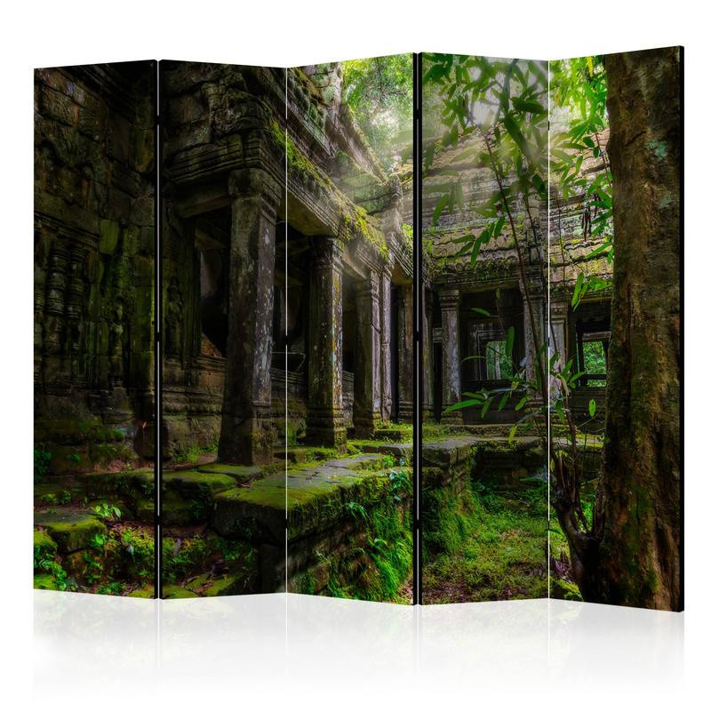 bosco e foresta